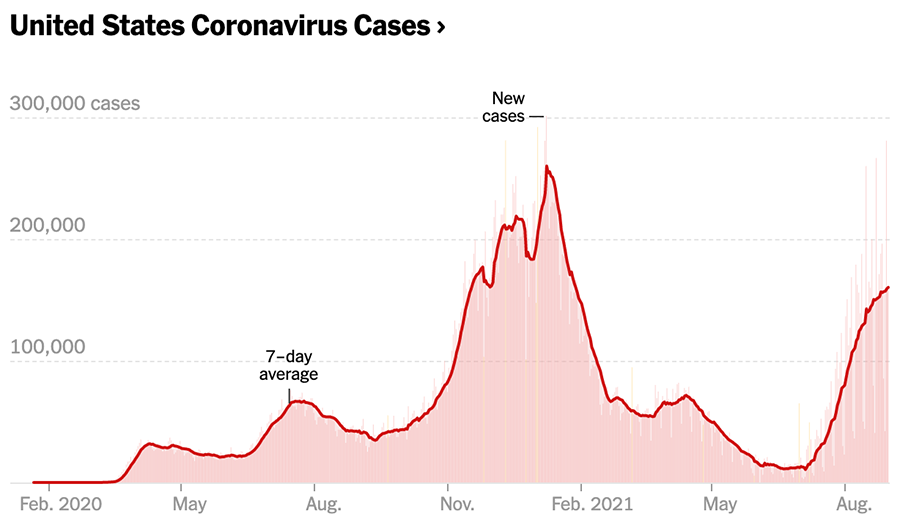 Chart showing U.S. COVID cases since February 2020
